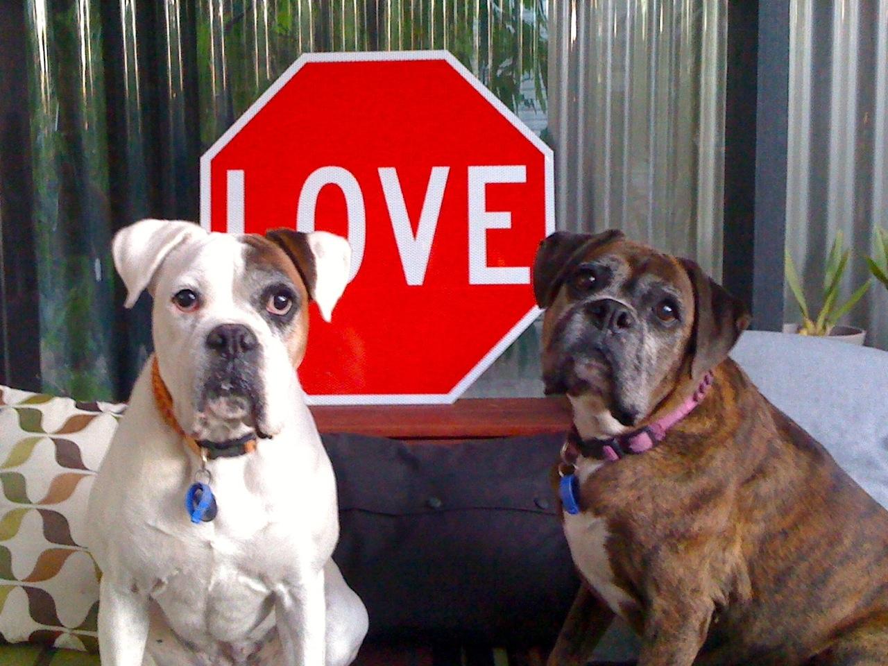 Love Gem & Charlie